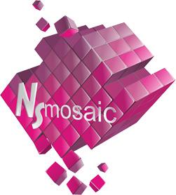 NSmosaic